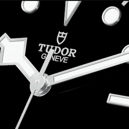 Tudor-Passion